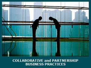 Collaborative and Partnership Business Practices